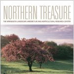 NORTHERN TREASURE
