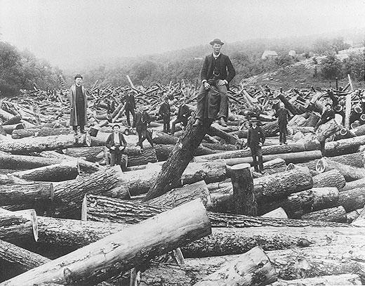 Loggers in Stillwater